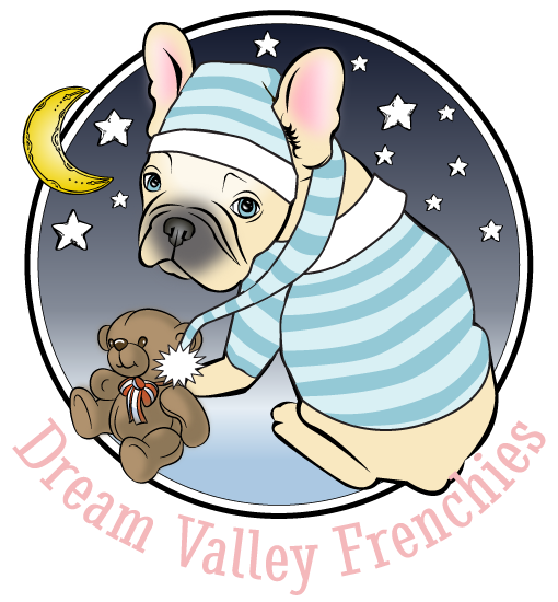 Dream Valley Frenchies